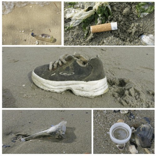 Examples of waste that can be found on a beach (Photo E. Turicchia)